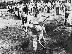 Заключенные концлагеря нойенгамм