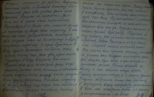 Страница дневника