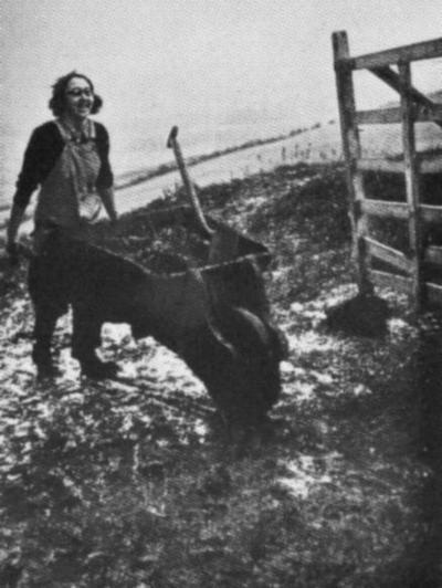 Девушка из Женской сельскохозяйственной армии.