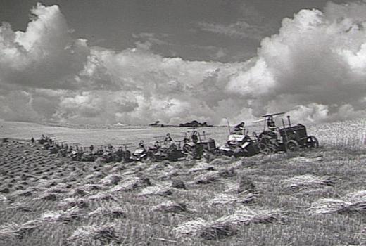 «Массовое наступление» на поле площадью 400 акров (160 гектаров).