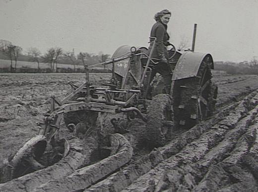 Женщины управляют трактором.
