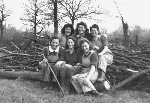 На расчистке земли перед ее культивированием в районе Эппинг Форест, 1943 г.
