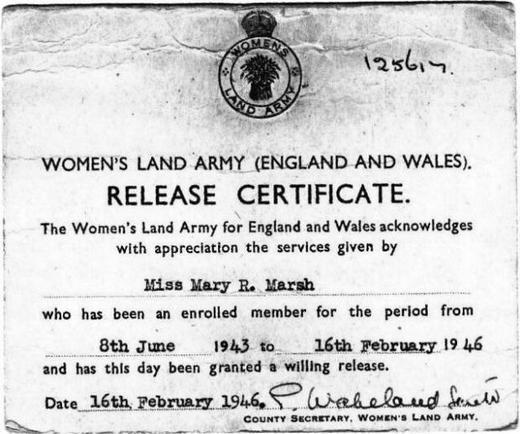 Документ Мэри об увольнении со службы в период с 8 июня 1943 г. по 16 февраля 1946 г.