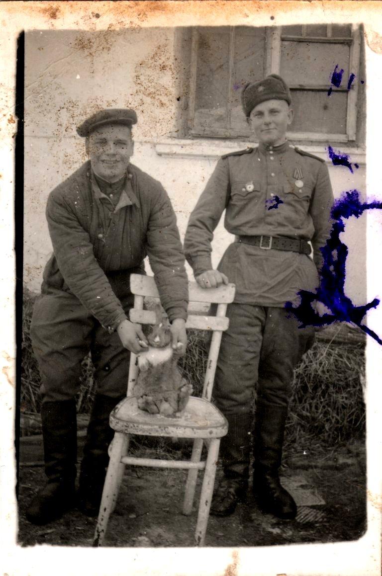 «Высылаю это фото на память своему другу Грише от друга Степы. Взгляни и вспомни. 1949. Новый год» - На снимке два неизвестных солдата. Один из них держит кошку, пытаясь посадить ее на стул. Другой, скорее всего, даже младше меня: худенький солдатик с мальчишескими чертами лица. Страшно представить, что его забрали на войну практически со школьной скамьи. Наверно, он попросил передать фотографию другу, но она волею судеб так и осталась на руках у моего прадеда.