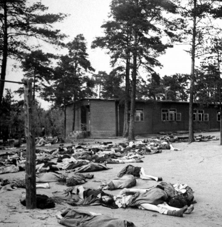 Тела умерших узников Берген-Бельзена на фоне лагерного барака.